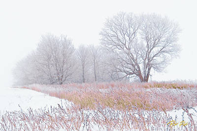 Photograph - Frostbit Fields by Rikk Flohr