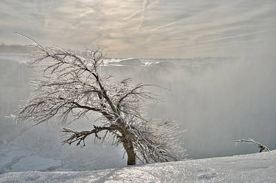Photograph - Frostbite by Sebastien Coursol