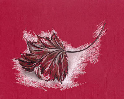Drawing - Frosted Autumn Maple Leaf On Red Paper by MM Anderson
