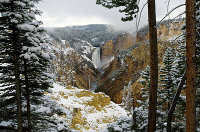 Art Print featuring the photograph Frosted Canyon by Steve Stuller