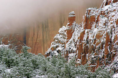 Photograph - Frosted Cliffs In Zion by Daniel Woodrum