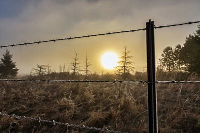 Photograph - Frosted Fence by Penny Meyers