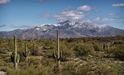 Photograph - Frosted Four Peaks  by Saija Lehtonen