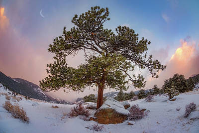 Royalty-Free and Rights-Managed Images - Frosted Mountain Moon by Darren White