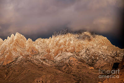 Photograph - Frosted Peaks by Steve Whalen