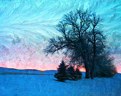 Photograph - Frosted Tree And Sunset by Kathy M Krause