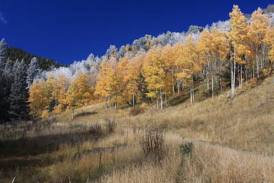 Mountain Photograph - Silver And Gold Road by John Suhr