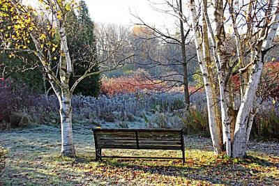 Photograph - Frosty Autumn Morning Light by Debbie Oppermann