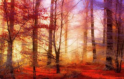 Photograph - Frosty Autumn Morning by Mandy Fontana