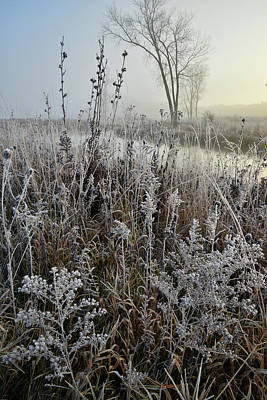 Photograph - Frosty Banks Of Nippersink Creek In Glacial Park by Ray Mathis
