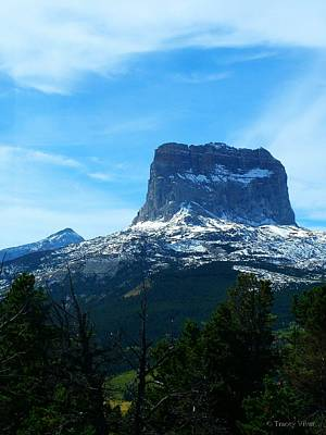 Photograph - Frosty Chief Mountain by Tracey Vivar