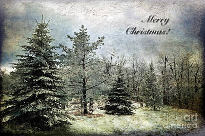 Christmas Cards Digital Art - Frosty Christmas Card by Lois Bryan