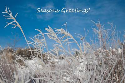 Photograph - Frosty Christmas Greeting by Cascade Colors
