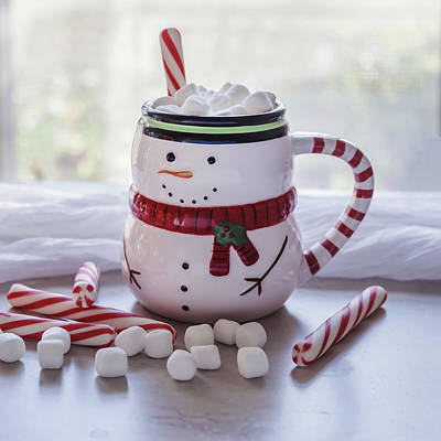 Photograph - Frosty Christmas Mug by Kim Hojnacki