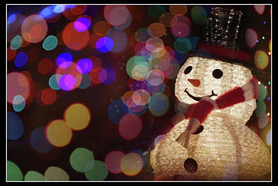 Photograph - Frosty Delight by Laura Macky