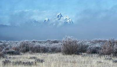 Photograph - Frosty Fall Morning - Grand Teton National Park by Sandra Bronstein