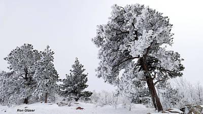 Negative Space - Frosty Fog 2 by Ron Glaser