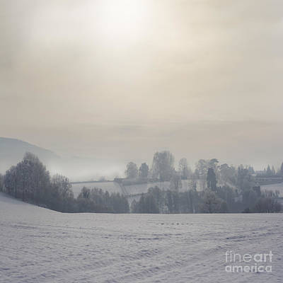 Frosty Landscape Art Print by Angel  Tarantella
