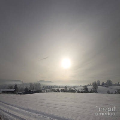 Frosty Midday Art Print by Angel  Tarantella
