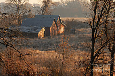 Photograph - Frosty Morn by Larry Ricker