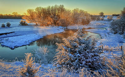 Photograph - Frosty Morning by Bruce Morrison