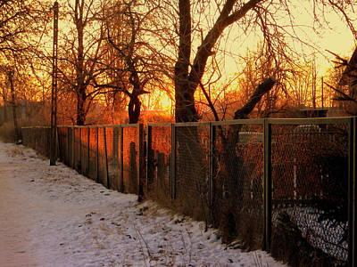 Photograph - Frosty Morning by Henryk Gorecki