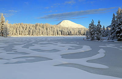 Photograph - Frosty Morning In The Uinta's. by Johnny Adolphson