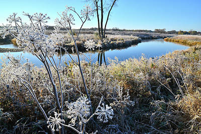 Photograph - Frosty Morning On Nippersink Creek In Glacial Park by Ray Mathis