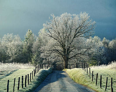 Photograph - Frosty Morning On Sparks Lane by TnBackroadsPhotos