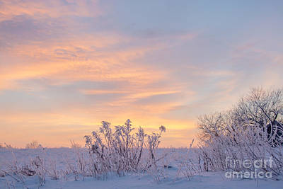 Photograph - Frosty Morning Sunrise by Cheryl Baxter