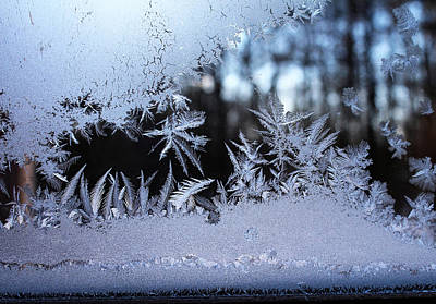Photograph - Frosty Morning Window by Liz Allyn