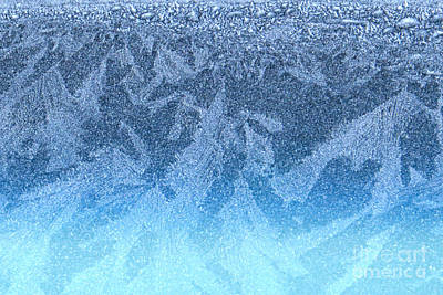 Photograph - Frosty Mosaic by Frank Townsley