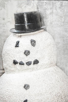 Photograph - Frosty by Pamela Williams