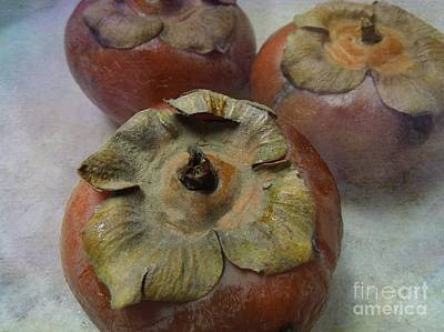 Photograph - Frosty Persimmons by Renee Trenholm