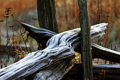 Photograph - Frosty Rails by Debbie Oppermann