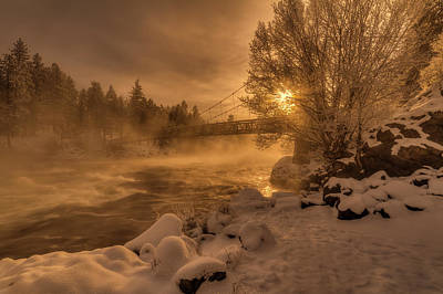 Photograph - Frosty Riverside by Mark Kiver