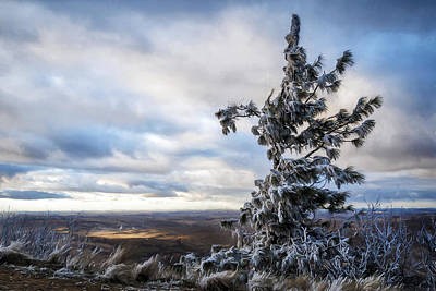 Photograph - Frosty Steptoe Butte by Wes and Dotty Weber