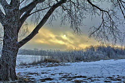 Photograph - Frosty Sunrise by Bonfire Photography