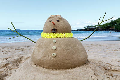Photograph - Frosty The Sandman by Denise Bird