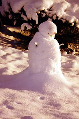 Photograph - Frosty The Snowman by Vadim Levin