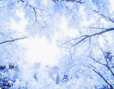 Photograph - Frosty Trees by Rich Governali