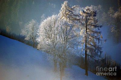 Photograph - Frosty Trees - Winter In Switzerland by Susanne Van Hulst