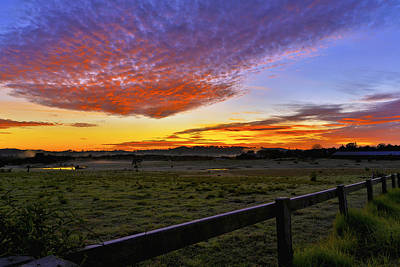 Photograph - Frosty Menangle by Kenneth Hall