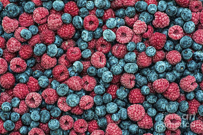 Raspberry Photograph - Frozen Berries by Tim Gainey