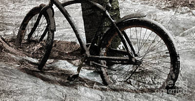 Photograph - Frozen Bicycle by John Stephens