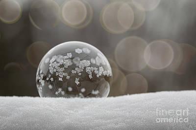 Photograph - Frozen Bubble 1 by Svetlana VanKempen