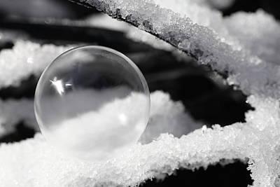 Frozen Bubble Art Print by Tammy Pool