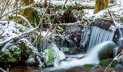 Photograph - Frozen Creek by Jason Brooks