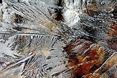 Photograph - Frozen by Debbie Oppermann