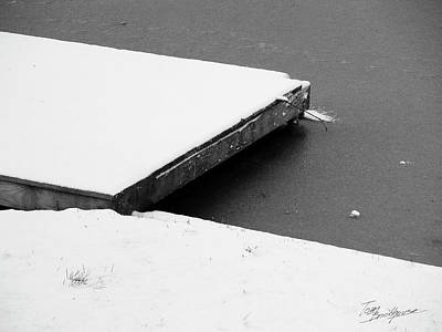 Photograph - Frozen Dock by Tom Brickhouse